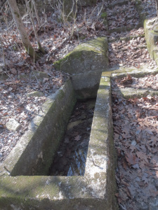 2018 3-13 Caney Mountain Aldo Leopold Cabin Site (14)