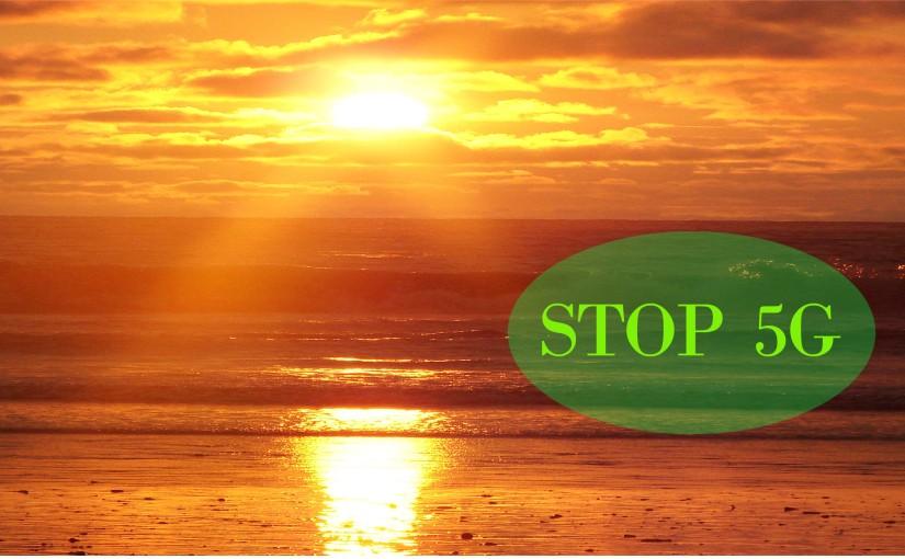 Oproep door de groep Straal-Zelf, aan iedereen die zich zorgen maakt over5G